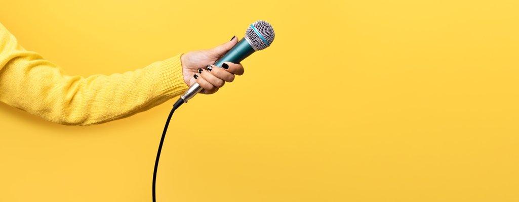 Mikrofon für Gespräch mit Experten